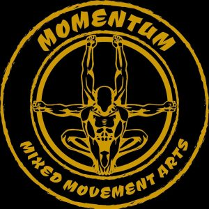 Momentum - Mixed Movement Arts bjj koh phagnan
